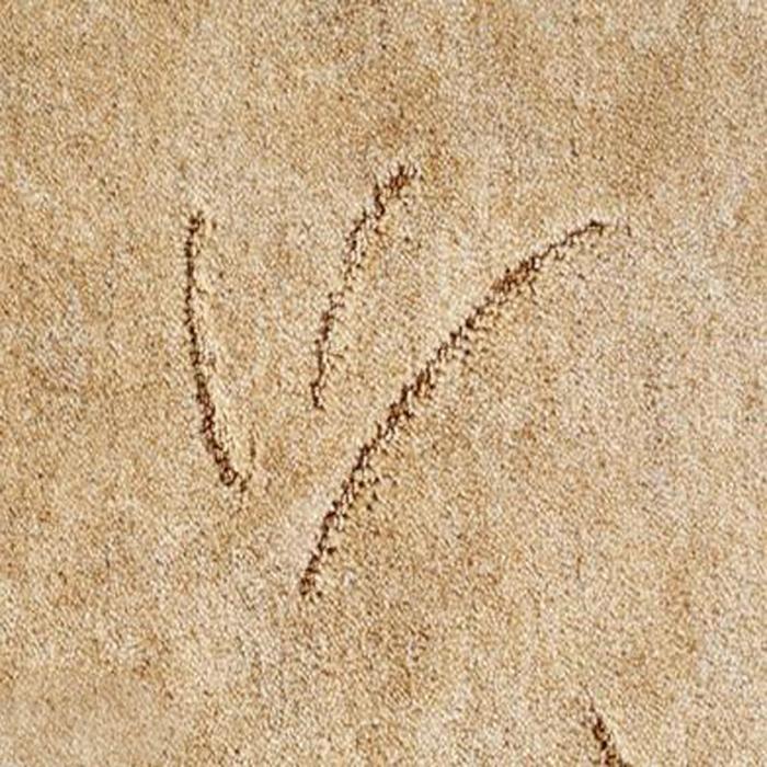 Ковровое покрытие, ковролин ZANZIBAR 283 (B) коньяк